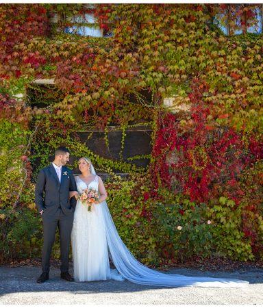 Adelaide Hills Wedding - ROBERT & JEMMA